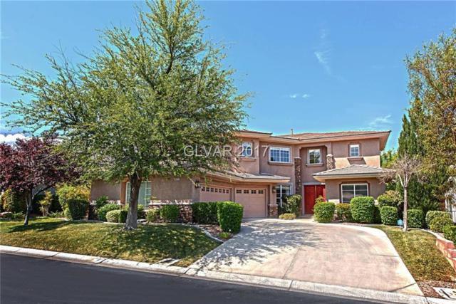 10212 Nightowl Creek, Las Vegas, NV 89144 (MLS #1914558) :: Signature Real Estate Group