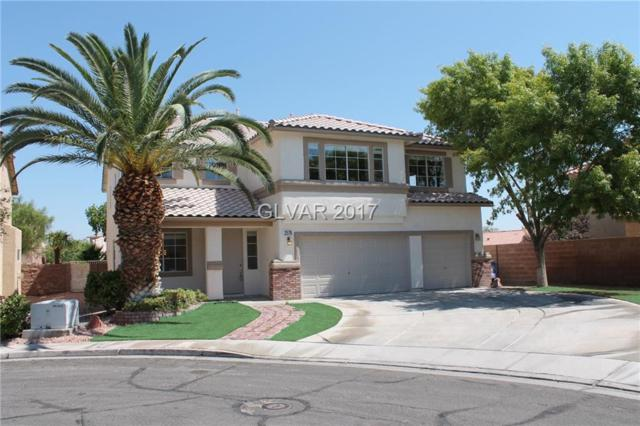 2576 Little Falls, Henderson, NV 89052 (MLS #1914664) :: Realty ONE Group