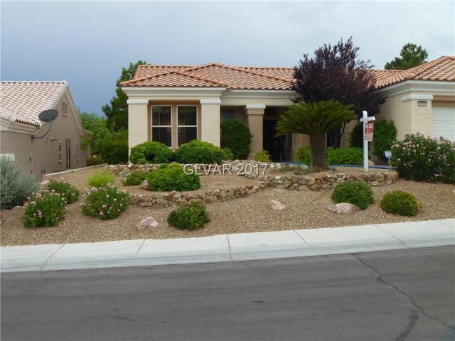 10905 Clarion, Las Vegas, NV 89134 (MLS #1915956) :: Signature Real Estate Group