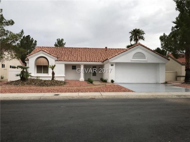 8809 Smokey, Las Vegas, NV 89134 (MLS #1915996) :: Signature Real Estate Group