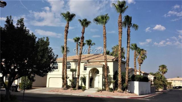 254 Delfino #0, Henderson, NV 89074 (MLS #1916111) :: Signature Real Estate Group