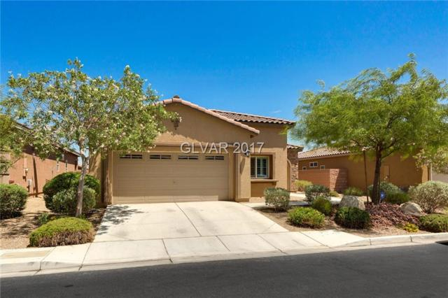 7170 Sunny Countryside, Las Vegas, NV 89179 (MLS #1917345) :: Realty ONE Group