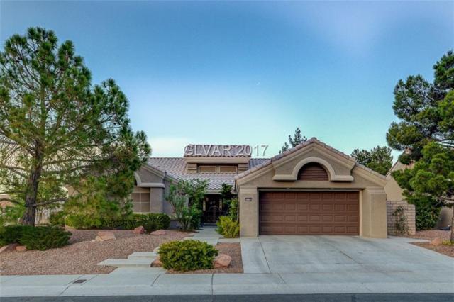 3028 Swan Hill, Las Vegas, NV 89134 (MLS #1917714) :: Realty ONE Group