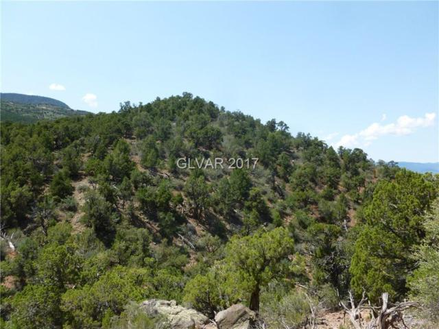 Hwy 14, Other, UT 84720 (MLS #1923414) :: Trish Nash Team