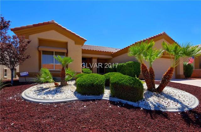 10509 Sea Palms, Las Vegas, NV 89134 (MLS #1924761) :: The Snyder Group at Keller Williams Realty Las Vegas
