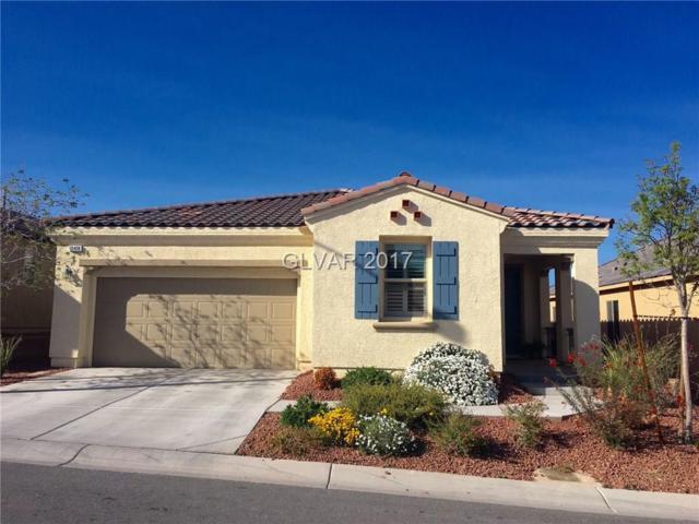 10408 Mount Oxford, Las Vegas, NV 89166 (MLS #1925542) :: Signature Real Estate Group