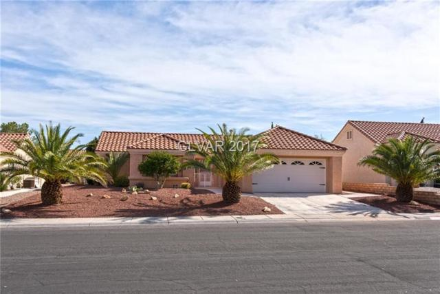 8805 Villa Ridge, Las Vegas, NV 89134 (MLS #1933394) :: Signature Real Estate Group