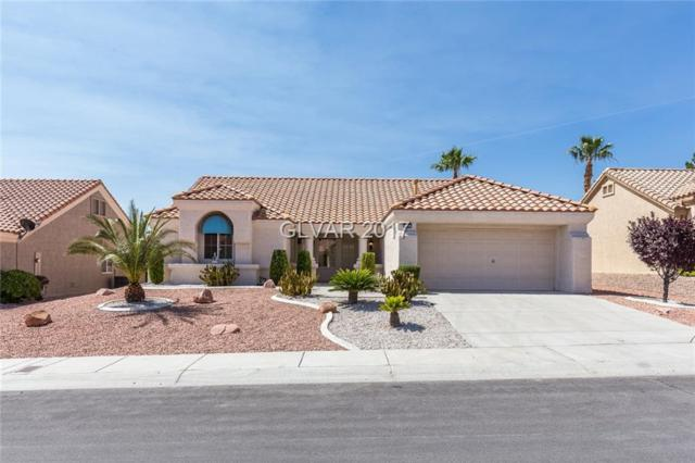 9221 Yucca Blossom, Las Vegas, NV 89134 (MLS #1933502) :: Realty ONE Group