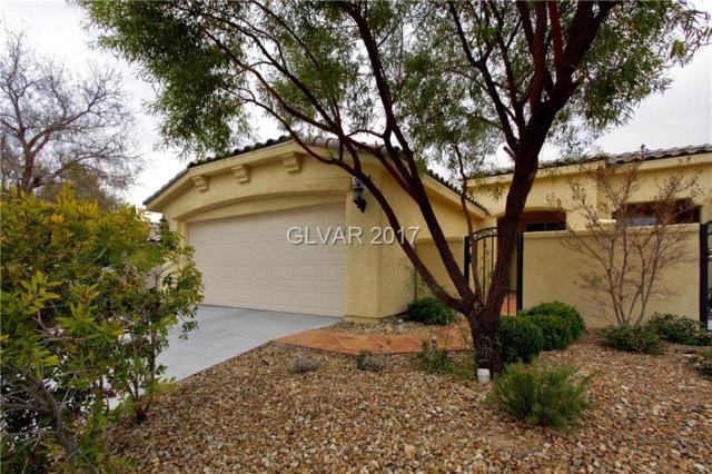 10271 Maggira, Las Vegas, NV 89135 (MLS #1934101) :: Signature Real Estate Group