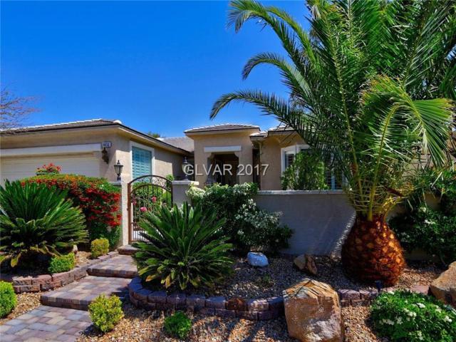 10232 Maggira, Las Vegas, NV 89135 (MLS #1934163) :: Signature Real Estate Group