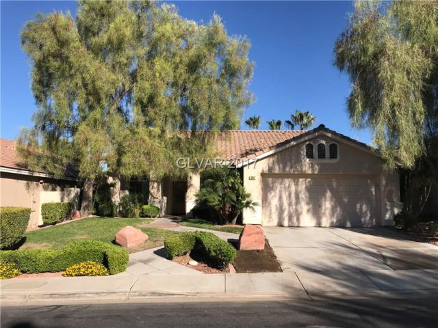 302 Canyon Spirit, Henderson, NV 89012 (MLS #1938572) :: Signature Real Estate Group