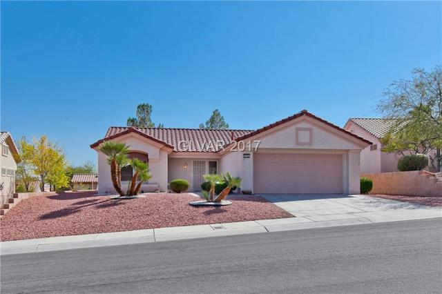 2732 Darby Falls, Las Vegas, NV 89134 (MLS #1939161) :: The Snyder Group at Keller Williams Realty Las Vegas