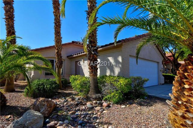 249 Sunny Summit, Henderson, NV 89052 (MLS #1939806) :: Signature Real Estate Group
