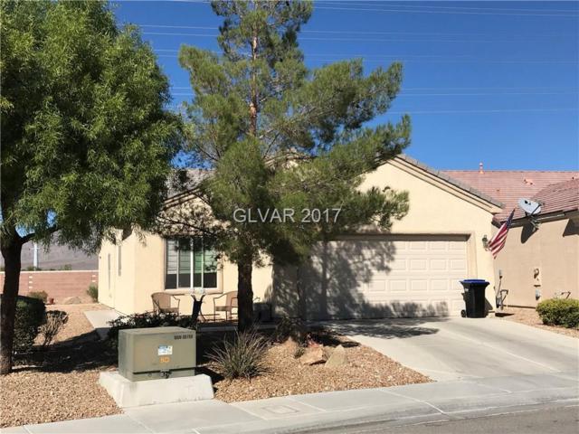 3616 Herring Gull, North Las Vegas, NV 89084 (MLS #1942145) :: Realty ONE Group