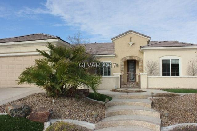 2227 Shadow Canyon, Las Vegas, NV 89044 (MLS #1951522) :: Signature Real Estate Group