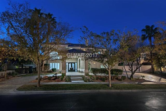 9004 Bald Eagle, Las Vegas, NV 89134 (MLS #1953469) :: Signature Real Estate Group
