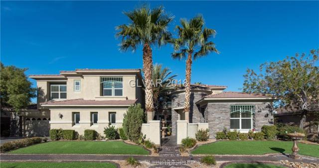 1716 Choice Hills, Henderson, NV 89012 (MLS #1955395) :: Realty ONE Group