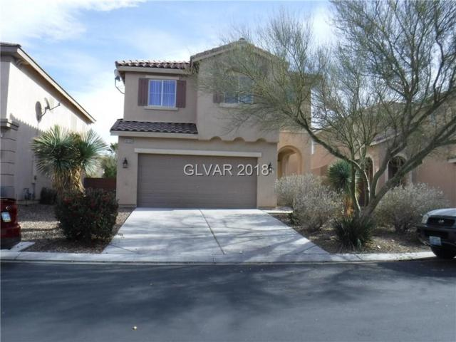 6928 Water Pipit, North Las Vegas, NV 89084 (MLS #1957112) :: Realty ONE Group
