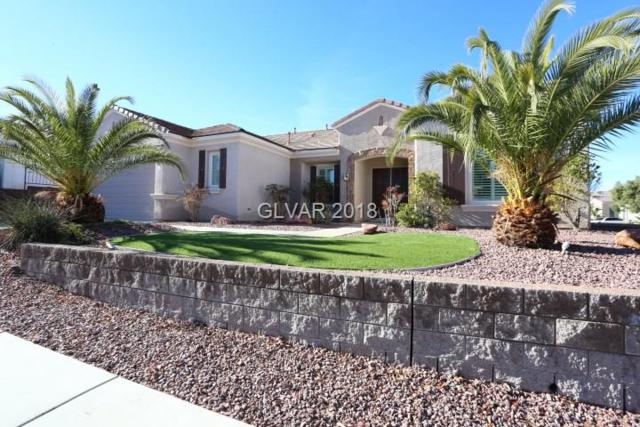 2081 Twin Falls, Henderson, NV 89044 (MLS #1958244) :: Keller Williams Southern Nevada