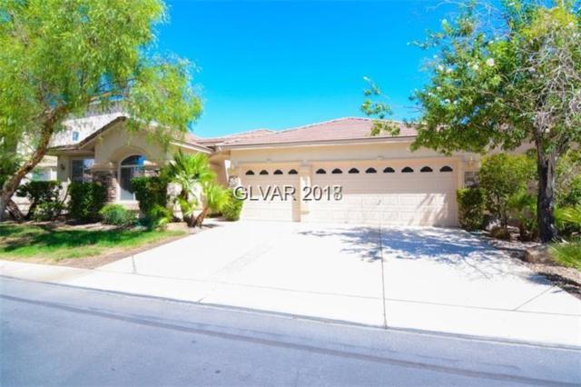 490 Fynn Valley, Las Vegas, NV 89148 (MLS #1959105) :: Realty ONE Group