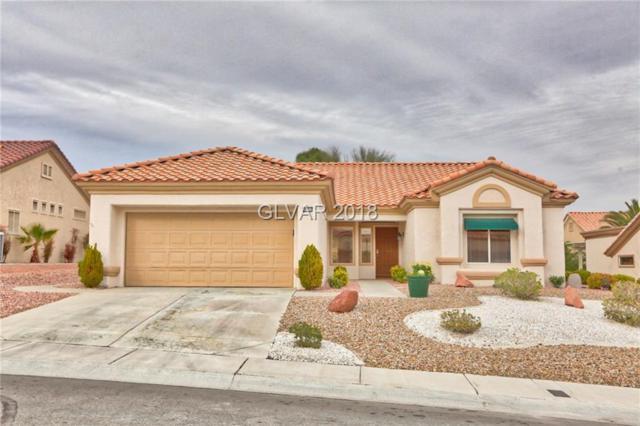 10136 Hunter Springs, Las Vegas, NV 89134 (MLS #1960747) :: The Snyder Group at Keller Williams Realty Las Vegas