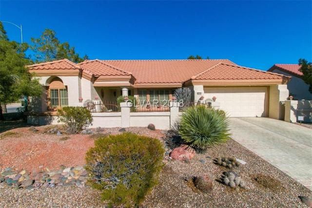 9000 Desert Mound, Las Vegas, NV 89134 (MLS #1961156) :: The Snyder Group at Keller Williams Realty Las Vegas