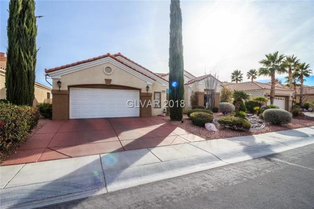 2124 Hot Oak Ridge, Las Vegas, NV 89134 (MLS #1963456) :: Signature Real Estate Group