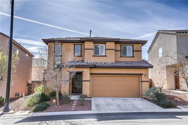 10625 Axis Mountain, Las Vegas, NV 89166 (MLS #1963610) :: Signature Real Estate Group