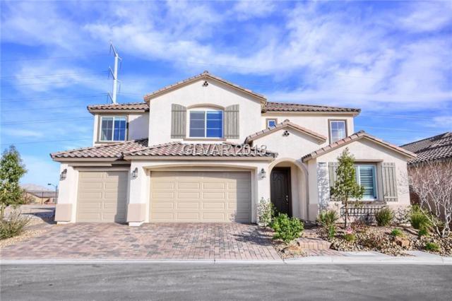7312 Durand Park, Las Vegas, NV 89166 (MLS #1964770) :: Signature Real Estate Group