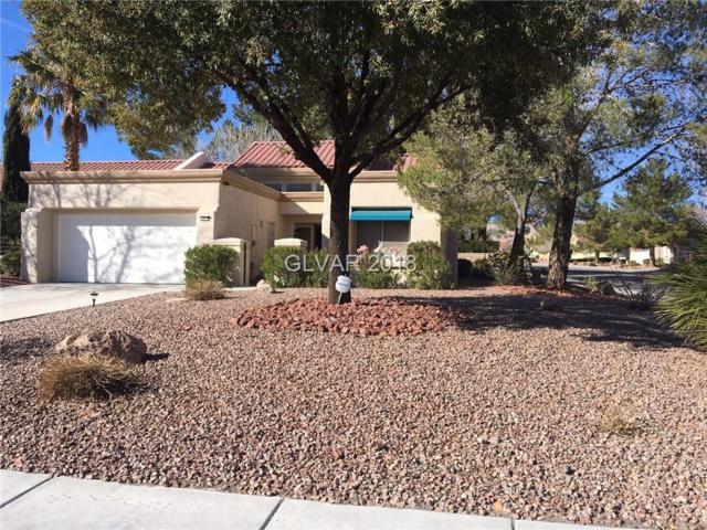 2413 Dove Valley, Las Vegas, NV 89134 (MLS #1966399) :: Signature Real Estate Group
