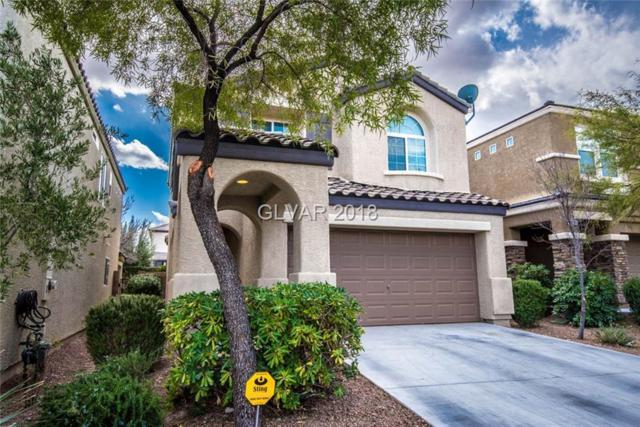 10253 Headrick, Las Vegas, NV 89166 (MLS #1967084) :: Signature Real Estate Group