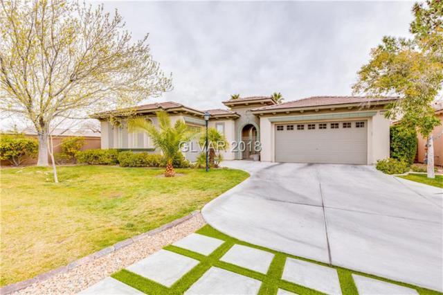 3306 Mist, Las Vegas, NV 89135 (MLS #1970699) :: Signature Real Estate Group