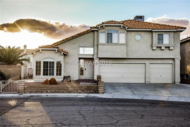 5279 Autumn Sky, Las Vegas, NV 89118 (MLS #1974179) :: Realty ONE Group