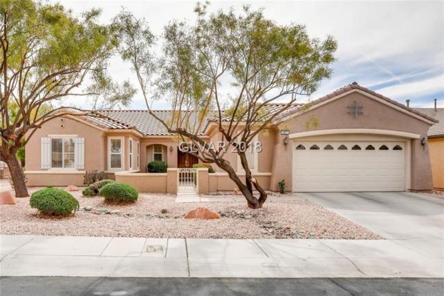 2801 Winslow Springs, Henderson, NV 89052 (MLS #1974691) :: Signature Real Estate Group