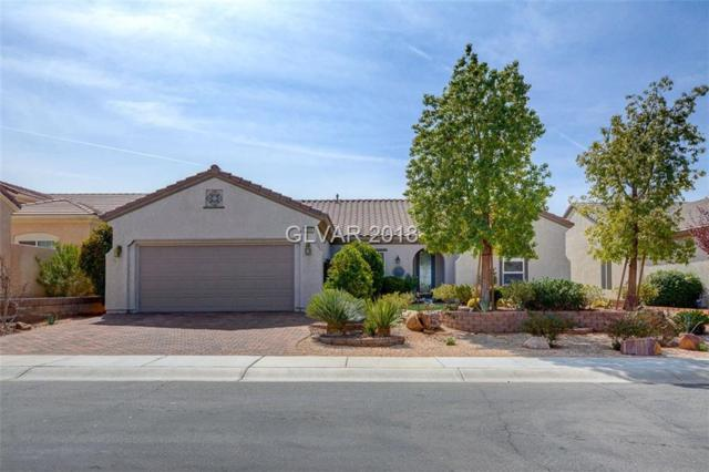 2389 Anderson Park, Las Vegas, NV 89044 (MLS #1975694) :: Signature Real Estate Group