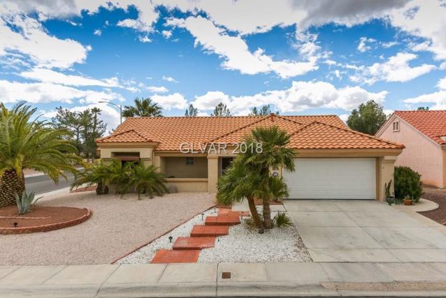 9029 Marble, Las Vegas, NV 89134 (MLS #1976307) :: Signature Real Estate Group