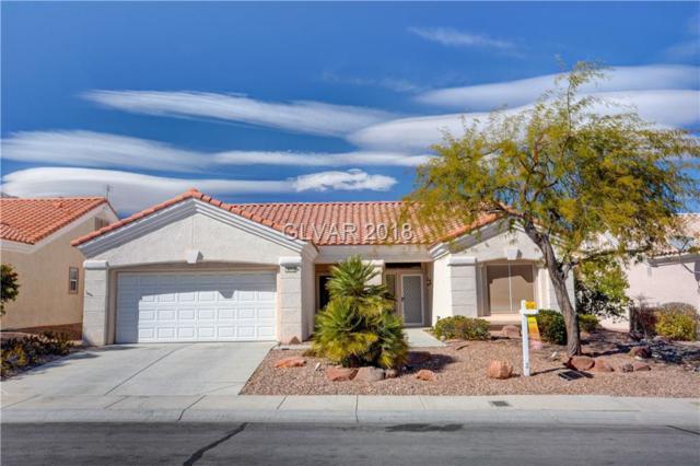 10712 Mission Lakes, Las Vegas, NV 89134 (MLS #1976750) :: Signature Real Estate Group