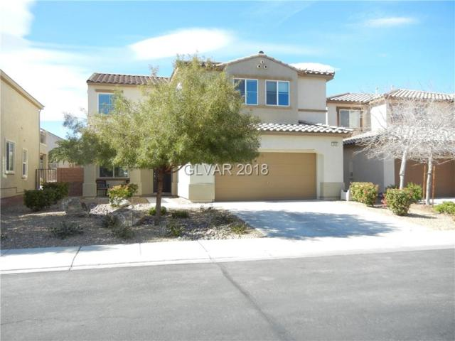3536 Pelican Brief, North Las Vegas, NV 89084 (MLS #1977008) :: Signature Real Estate Group