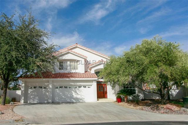 178 Palta, Henderson, NV 89074 (MLS #1978380) :: Catherine Hyde at Simply Vegas