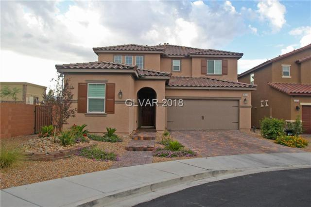 2651 Soda Butte, Henderson, NV 89052 (MLS #1978457) :: Catherine Hyde at Simply Vegas