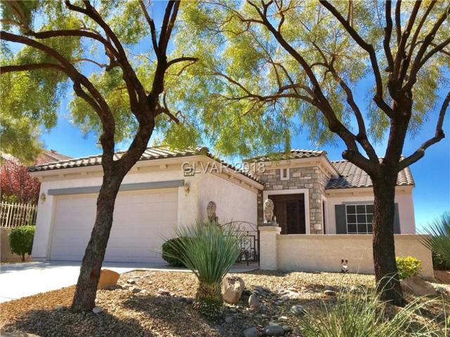 3073 Brownbirds Nest, Henderson, NV 89052 (MLS #1978592) :: Catherine Hyde at Simply Vegas