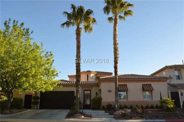 11342 Winter Cottage, Las Vegas, NV 89135 (MLS #1979639) :: Realty ONE Group