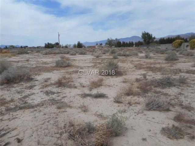 4730 E Mcgraw, Pahrump, NV 89061 (MLS #1983951) :: Catherine Hyde at Simply Vegas