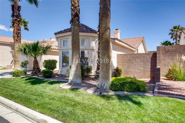 5638 Wild Olive, Las Vegas, NV 89118 (MLS #1984622) :: Realty ONE Group
