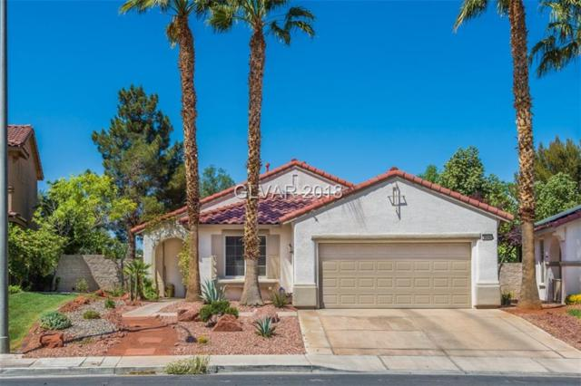 3034 Paseo Hills, Henderson, NV 89052 (MLS #1984762) :: Trish Nash Team
