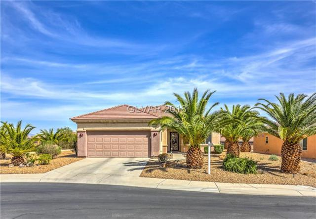 2137 Cedar Valley, Henderson, NV 89052 (MLS #1984911) :: Realty ONE Group