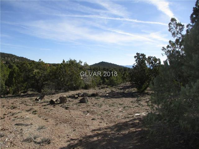 Pcl 4A Moser/Newlon Map, Pioche, NV 89043 (MLS #1986030) :: Trish Nash Team
