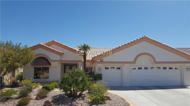 3016 Highland Falls, Las Vegas, NV 89134 (MLS #1986142) :: Realty ONE Group