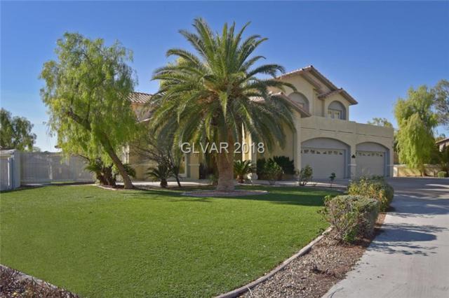 8221 Omni, Las Vegas, NV 89149 (MLS #1986374) :: Sennes Squier Realty Group