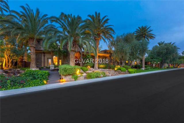 1513 Foothills Village, Henderson, NV 89012 (MLS #1991152) :: Realty ONE Group